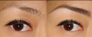 brow growth hollyberry